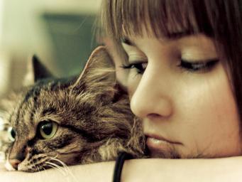Ученые подтвердили, что кошки продлевают жизнь людям