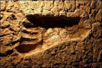 Британцы обнаружили след человека, жившего 800 тысяч лет назад