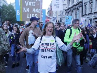 демонстрация в поддержку петиции Final Say