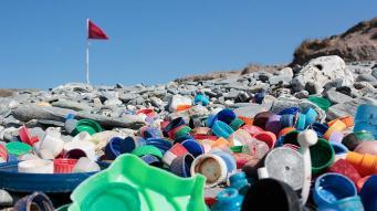 очистка пляжей от мусора