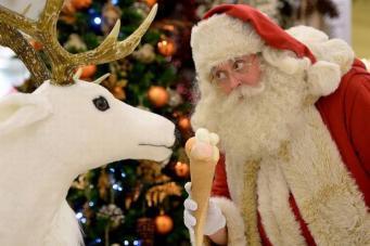 Рождество в Seldridges