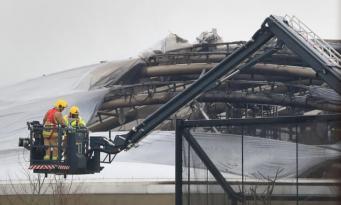 Зоопарк Честера начал сбор средств на восстановление павильона после пожара