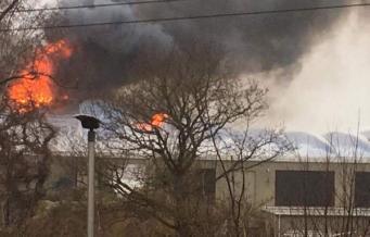 Пожар в Зоопарке Честера: эвакуированы люди и животные