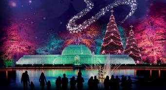 Парк Kew Gardens приглашает на волшебную новогоднюю прогулку