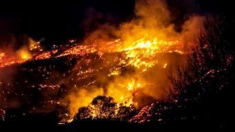 Пикники с барбекю и пал травы спровоцировали десятки пожаров в Великобритании