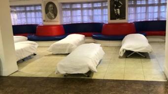 Футбольный клуб Crystal Palace отдал свободные площади стадиона в помощь бездомным