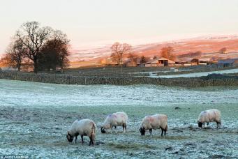 Британское метеобюро повысило точность прогнозов погоды на год вперед фото:dailymail.co.uk