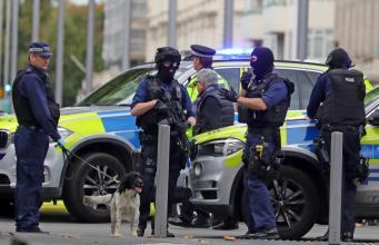 Наезд на пешеходов в центре Лондона: водитель задержан фото:thesun