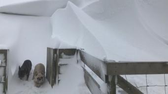Жители Камбрии остаются отрезанными от внешнего мира после сильнейших снегопадов