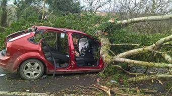 Шторм Doris атаковал Великобританию, разогнавшись до девяноста миль в час фото:skynews