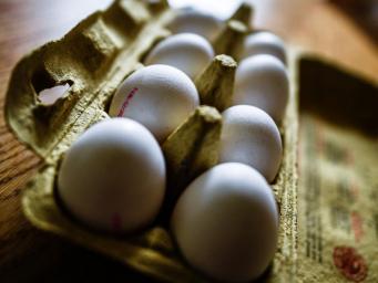 Небезопасные куриные яйца из Евросоюза попали в Великобританию фото:independent