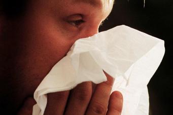 В Великобритании опубликованы официальные карты опасных зон для аллергиков фото:standard.co.uk