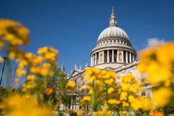 Погода в Великобритании побила температурный рекорд за семьдесят лет