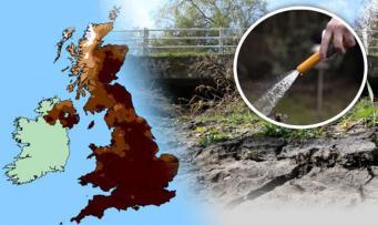 Дефицит воды может привести к запрету на использование шлангов в Великобритании