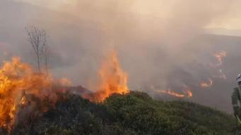 В степях на севере Англии снова разгораются пожары