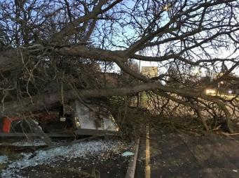 Ирландский шторм спровоцировал усиление ветра по югу и востоку Англии