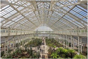 В Ботаническом саду Кью открылась самая большая в мире оранжерея