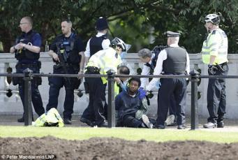 Вооруженный мужчина задержан у ворот Букингемского дворца фото:dailymail