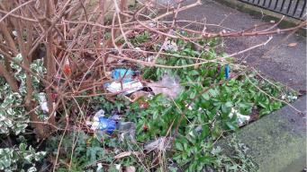 «Немедленное возмездие» за выброшенный мусор введено в Великобритании