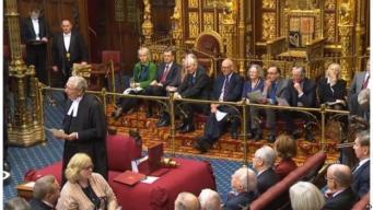 Билль о Брекзите дошел до верхней Палаты парламента фото:bbc.com