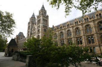 Лондонские музеи следят за посетителями через бесплатный Wi-Fi