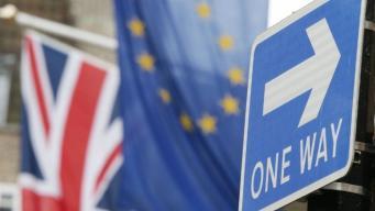 Палаты британского парламента схлестнутся в споре о правах мигрантов из ЕС и вето на Брекзит фото:bbc.com