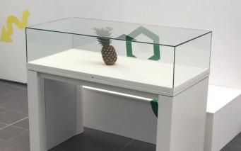 Организаторы фестиваля в Абердине приняли забытый ананас за арт-объект фото:standard.co.uk