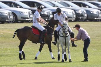 Принцы Уильям и Гарри сыграют в поло на благотворительных матчах  фото:dailymail