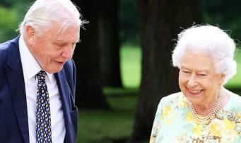 Королева Елизавета II готовит новую экологическую инициативу