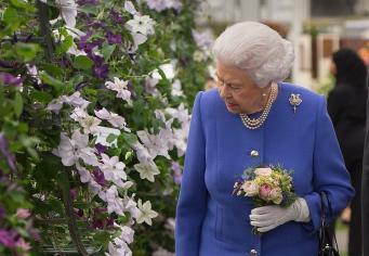 Королева Елизавета II и герцогиня Кейт посетили Chelsea Flower Show фото:dailymail