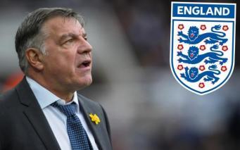 Новый тренер британской сборной по футболу отправлен в отставку после первого же матча фото:telegraph.co.uk
