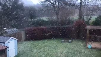 В Лондоне выпал снег - впервые за эту зиму