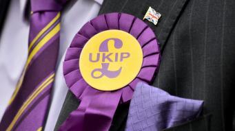 UKIP снова пытается выбрать лидера партии фото:itv