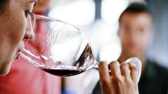 Сколько сигарет в бутылке вина,  рассказали британские ученые
