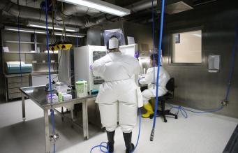 Ученые работают с вирусом