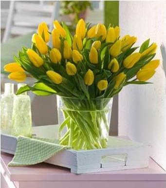 Запрет дарить цветы пациентам
