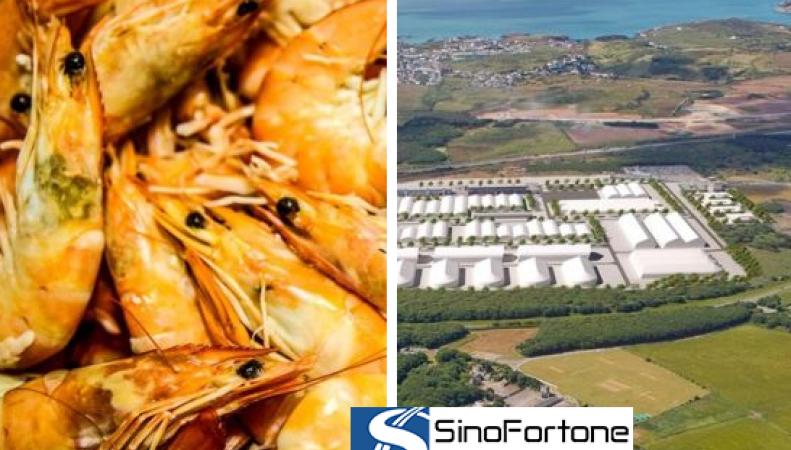 китайские инвестиции в пищепром