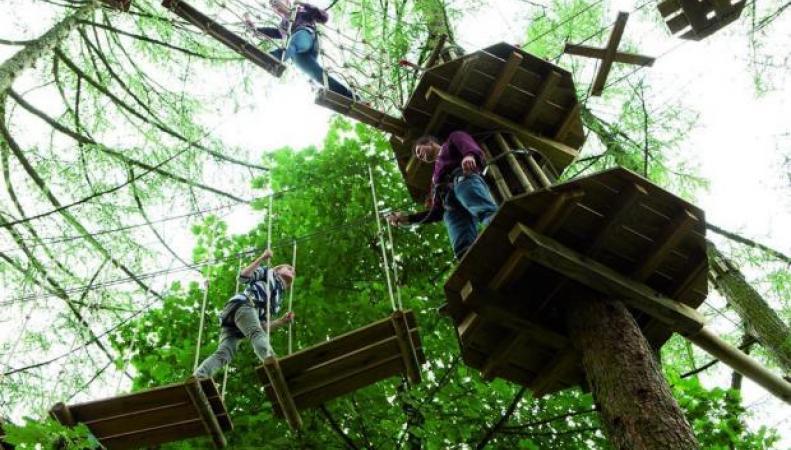Аттракцион Go Ape в Баттерси-парке