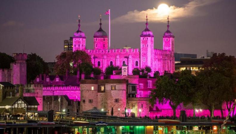 Тауэрский мост покрасят в розовый цвет в честь рождения принцессы
