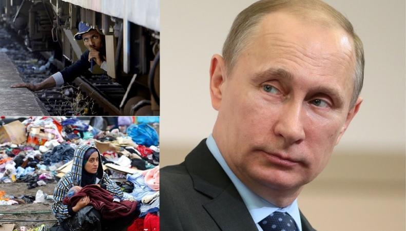 Британский ученый: Европа сгинет под натиском беженцев и Путина