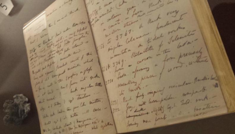 Дневники Чарльза Дарвина