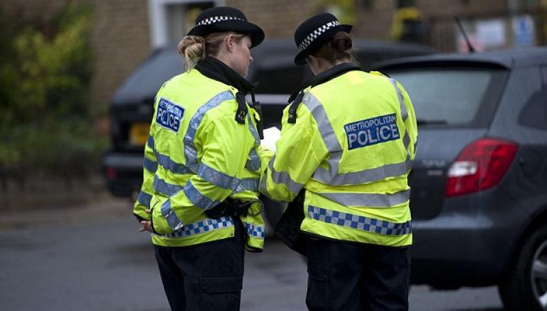 полицейские нспекторы