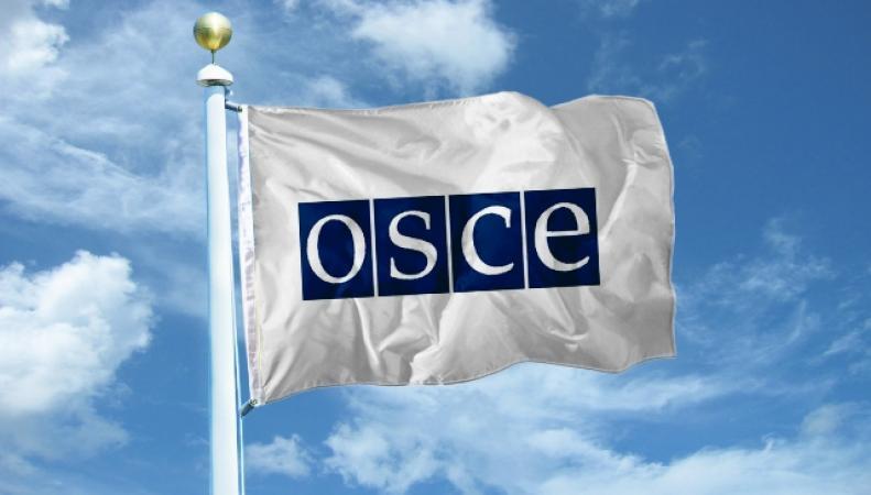 РФ требует от ОБСЕ действий на задержания в Украине журналистов
