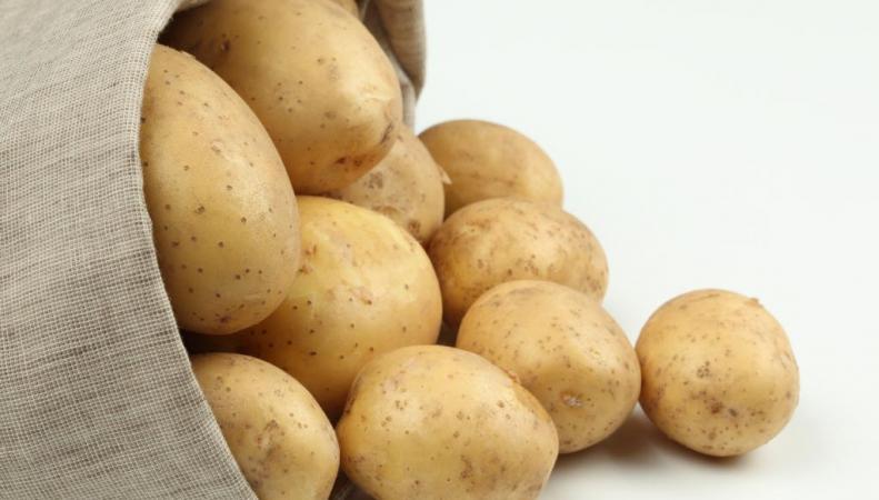 Белоруссия запретит импорт картофеля из Украины под влиянием России