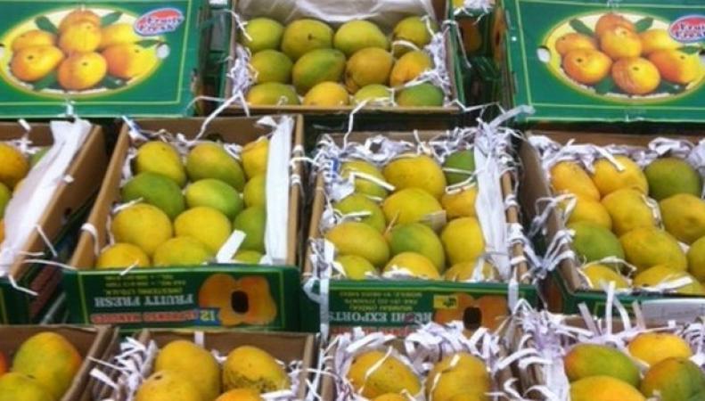 индийский манго
