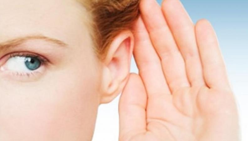 Ученые вырастили ухо из стволовых клеток