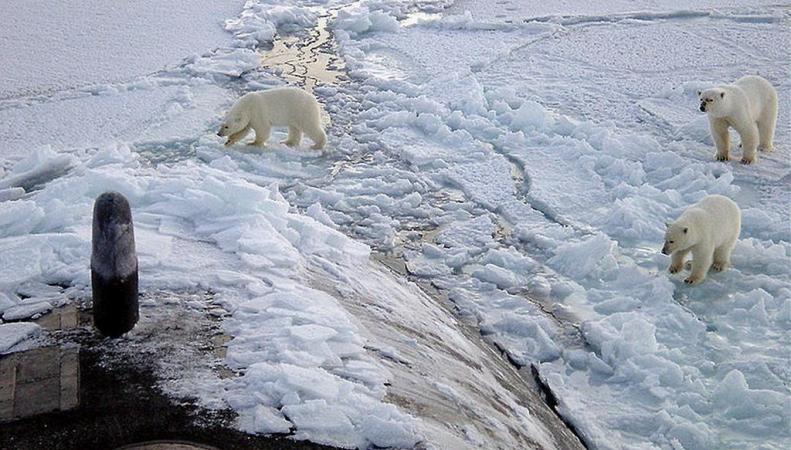 США обвинили Россию в милитаризации Арктики