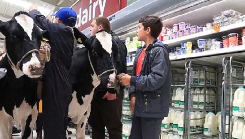 Британские фермеры страдают из-за санкций