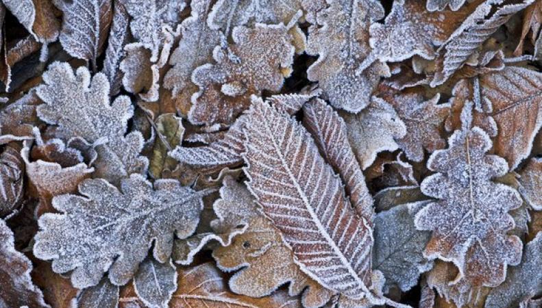 похолодание в Великобритании