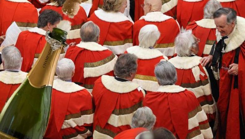 Члены палаты лордов